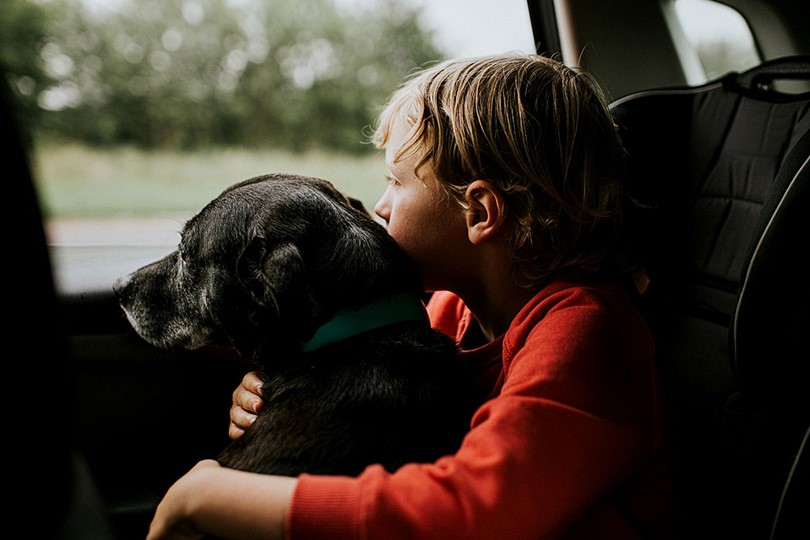 Boy In Car With Dog